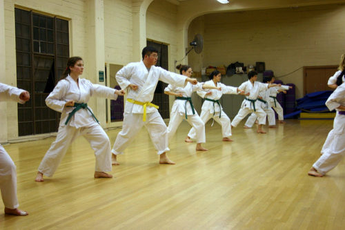 Difference Between Aikido and Karate-1
