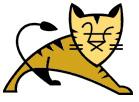 tom-cat-server