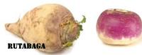 rutabaga-turnip