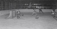 hockey_pd