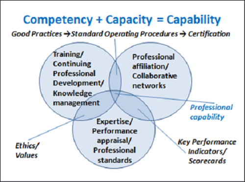 Difference Between Capability and Competency