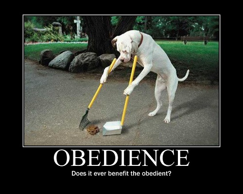 Difference Between Conformity and Obedience-1