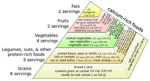 Difference between Vegetarian and Vegan-1