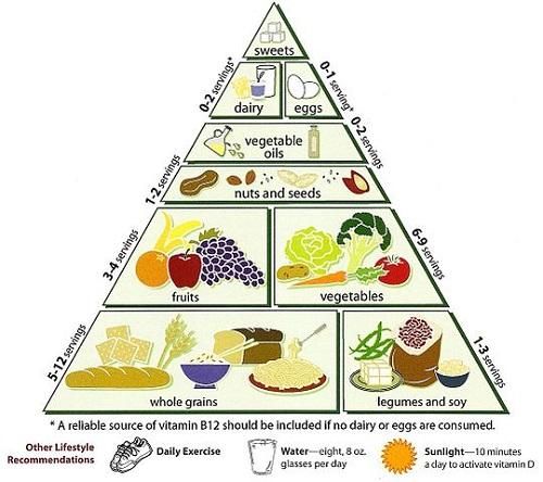 Difference between Vegetarian and Vegan