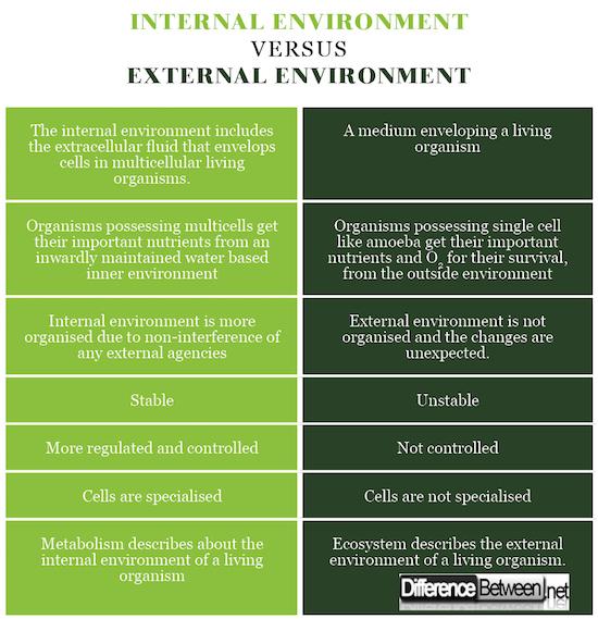 Internal environment VERSUS External environment