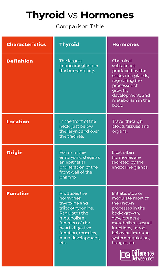 Difference Between Thyroid And Hormones Difference Between