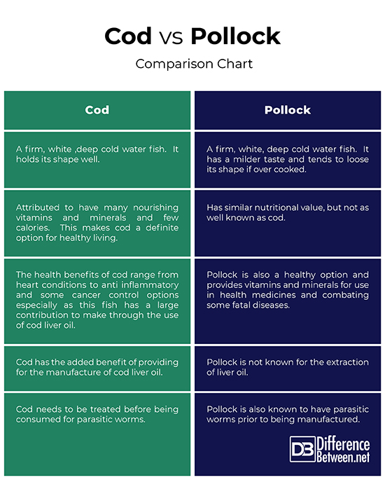Difference Between Cod and Pollock